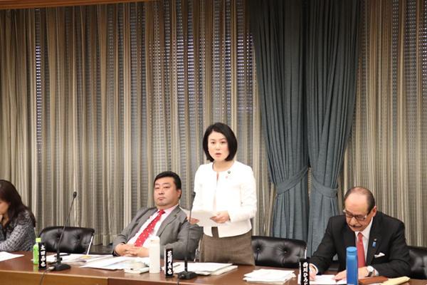 【環境対策特別委員会】